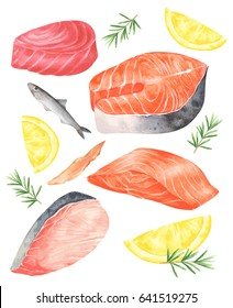 Fresh fish meat set.There's Salmon fillet,Salmon steak,Tuna meat,Swordfish meat,fresh and dried Anchovy.with Lemon and Rosemary.Vector seafood set isolated on white Background.