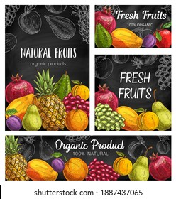 Fresh fruits vector sketch posters, natural pineapple, pomegranate, apricot or grapes with plum. Organic pear, mango, orange and apple with avocado. Hand drawn eco farm products exotic assortment