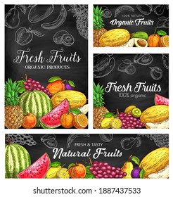 Fresh fruits vector sketch posters, natural pineapple, watermelon, apricot or grapes with plum. Organic pear, mango, orange and melon with kiwi, avocado. Hand drawn eco farm product natural assortment