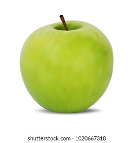 Fresh green apple isolated on a white background . Realistic vector