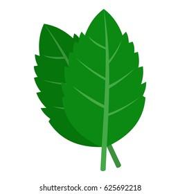 Fresh green basil leaves icon. Flat illustration of basil leaves vector icon logo isolated on white background