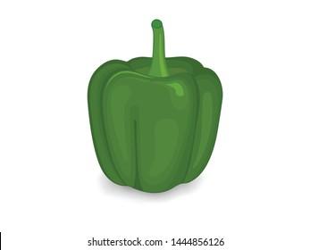fresh green bell pepper (capsicum) vector illustration on a white background