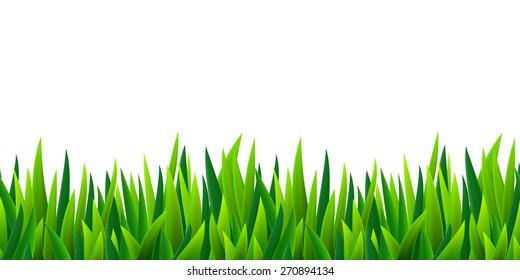 Fresh green grass seamless border, isolated over white, vector illustration