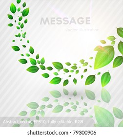 fresh green leaves and sun shine for summer design