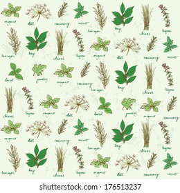 Fresh herbs background vector