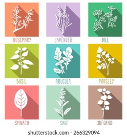 Fresh herbs and spices icon set, flat style icons with long shadows Vector illustration.