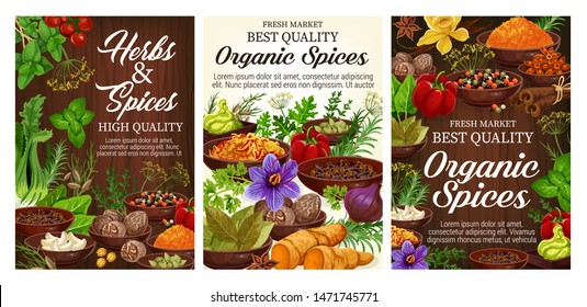 Fresh herbs, spices, vegetable seasonings and food condiments on wooden background. Vector pepper, parsley and basil, cinnamon, vanilla and nutmeg, garlic, ginger and rosemary, turmeric powder, celery