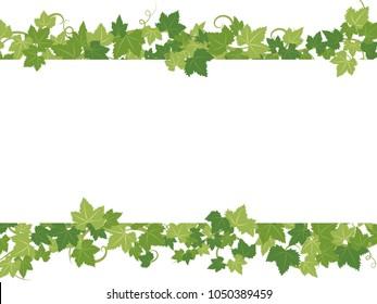 Fresh ivy leaf vector frame.