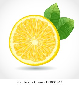 Fresh juicy piece of lemon vector illustration isolated on white