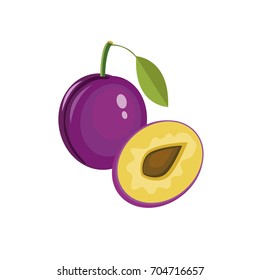 Fresh juicy plum isolated on a white background. Colorful half and whole plum with a leaf. Perfect for juice or jam. Vector illustration