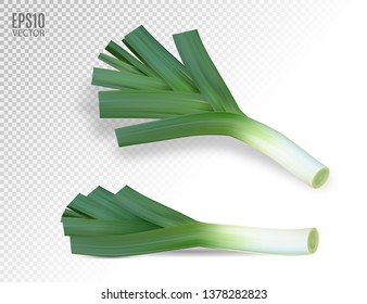 Fresh leek on a white background. Photo realistic vector, 3d