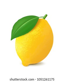 Fresh lemon. 3d realistic vector image