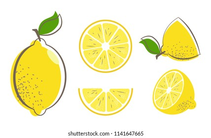 Fresh lemon fruits with leaf. Lemon vector illustration set. Whole, cut in half, sliced on pieces lemons. Citrus collection. Lemon logo or icon.