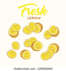 Fresh lemon hand drawn vector illustrations set. Handwritten calligraphy, lettering. Sketch fruits clipart collection. Sliced lemons engraving style drawing. Isolated citrus color design elements