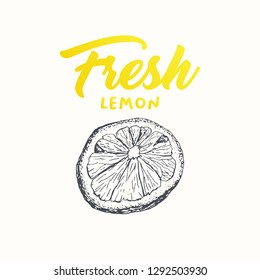Fresh lemon vector banner template. Sketch fruit clipart. Sliced lemon engraving style drawing. Handwritten calligraphy, lettering. Isolated citrus color design element. Shop sign, store logo
