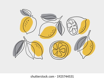 Fresh lemons print. Hand drawn line lemon illustration. Minimalism lemon. Poster with  citrus fruits.