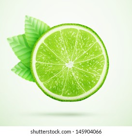 fresh lime with leaves eps10 vector illustration