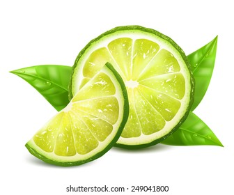 Fresh limes with leaves. Vector illustration