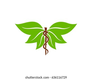 Fresh Medical logo