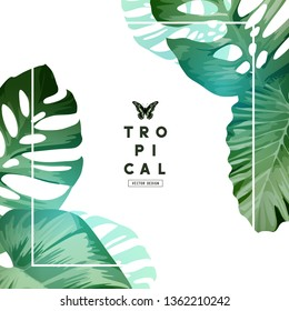 Fresh and minimal tropical frame design with palm tree leaves. Vector illustration.