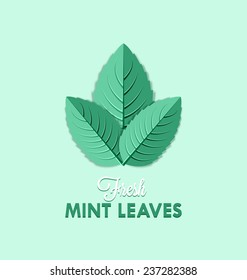Fresh mint leaves isolated on pale green background
