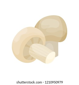 Fresh mushroom champignon vector Illustration on a white background
