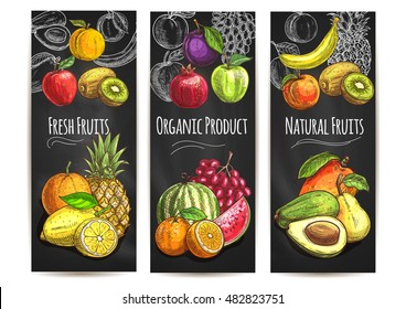 Fresh natural fruits banners. Vector sketch color icons of pear, orange, avocado, apple, peach, banana, kiwi, lemon, mango, pineapple, watermelon, pomegranate, grape, plum for juice drink label