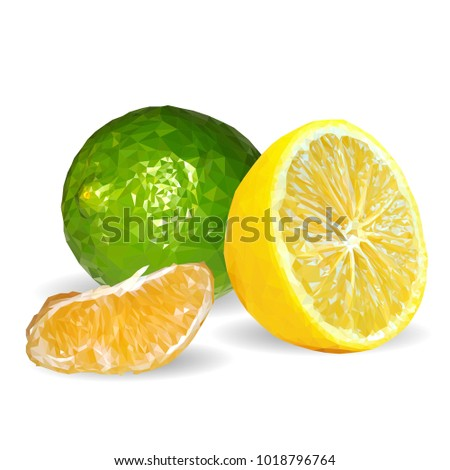 Fresh Nutritious Lemon Tasty Limes Symbols Stock Vector Royalty