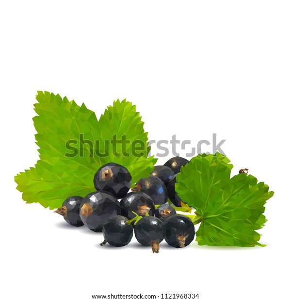 Fresh, nutritious and tasty black currant. Symbols of berries. Elements for label design. Vector illustration. Berries ingredients in triangulation technique. Black currant low poly.