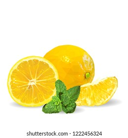 Fresh, nutritious and tasty mint with lemon. Symbols of fruits. Elements for label design. Vector illustration. Fruits ingredients in triangulation technique. Mint with lemon low poly. Mojito.