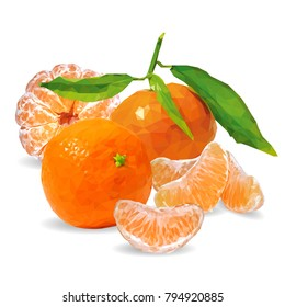 Fresh, nutritious and tasty tangerines. Symbols of fruits. Elements for label design. Vector illustration. Fruits ingredients in triangulation technique. Tangerines low poly.