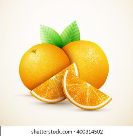 Fresh oranges fruits with green leaves and slices eps10 vector illustration