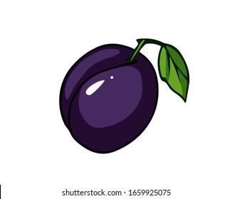 Fresh plum. Cartoon vector icon isolated on white background.