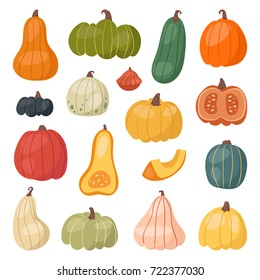 Fresh pumpkin decorative seasonal ripe food organic healthy vegetarian vegetable vector