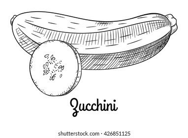 Fresh raw zucchini and sliced zucchini with seeds. Isolated with the inscription