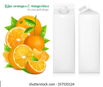 Fresh ripe oranges and tangerines with green leaves. Juice white carton package. Vector illustration