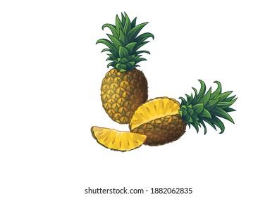 Fresh ripe pineapple Tasty raw whole slice cut tropical fruit vector illustration isolated on white background