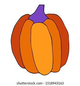 Fresh and ripe pumpkin isolated  on a white background. Harvesting for the winter. Autumn harvest. Vector hand drawing illustration. Halloween gourd, vegetable graphic icon for print.