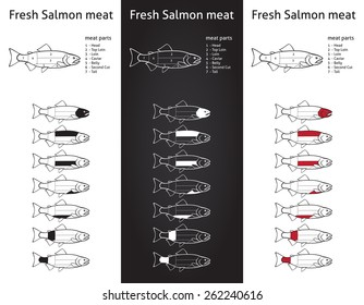 Fresh salmon meat diagram in three versions
