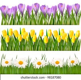 Fresh spring flower borders. Vector