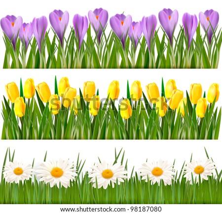 Fresh spring flower borders vector stock vector royalty free fresh spring flower borders vector mightylinksfo