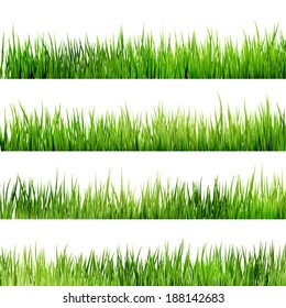 Fresh spring green grass Isolated On White. And also includes EPS 10 vector