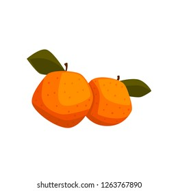 Fresh tangerine fruits with green leaves vector Illustration on a white background