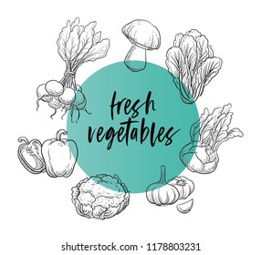 Fresh vegetables badge or sign, line drawing on colorful transparent circle. With radish, pepers, couliflower, garlic, turnip, spinach and boletus. Hand drawn doodle vector illustration.