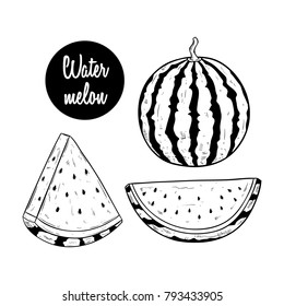 fresh watermelon with two type of slice and using sketch style