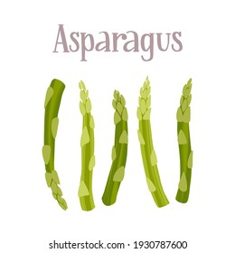 Fresh young asparagus stalks. Healthy nutrition product. Vector hand drawn flat isolated illustration with hand written lettering for your design on white background.