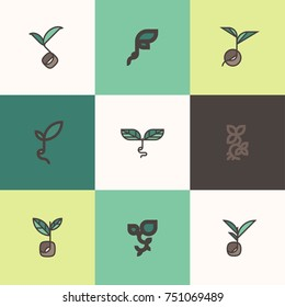 Freshly grown organic sprouts and shoots. Set of modern line logo mark templates or icons with sprouting seeds and beans