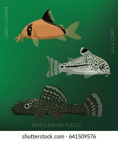 Freshwater Cory Catfish Set Cartoon Vector Illustration