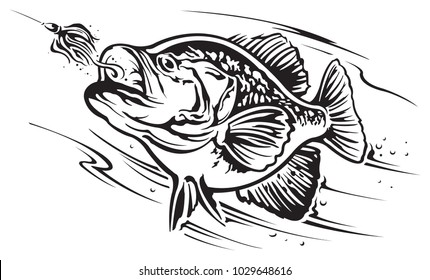 crappie fish images stock photos vectors shutterstock rh shutterstock com Crappie Fishing Art Crappie Vector Art