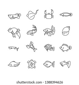 Freshwater icon set and freshwater living organisms